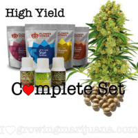 High Yield Seeds Grow Set