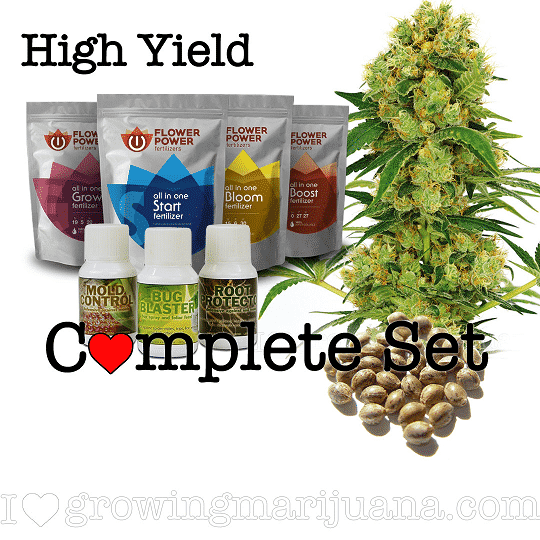 High Yield Seeds Grow Set