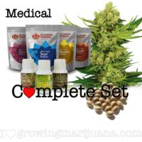 Medical Marijuana Seeds Grow Set