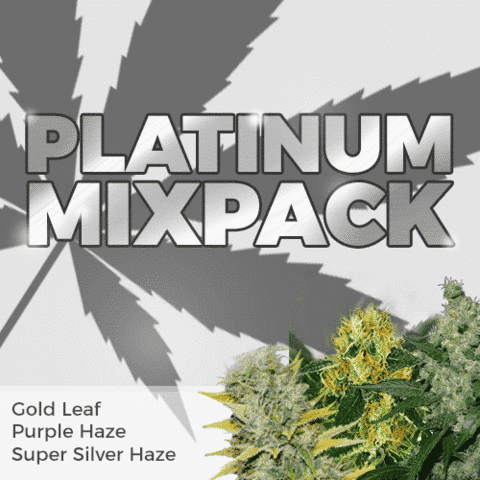 Platinum Mix Pack Seeds