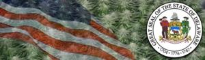 Buy Marijuana Seeds In Delaware