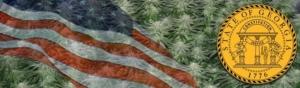 Buy Marijuana Seeds In Georgia