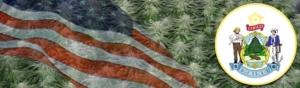 Buy Marijuana Seeds In Maine