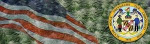 Buy Marijuana Seeds In Maryland