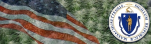 Buy Marijuana Seeds In Massachusetts