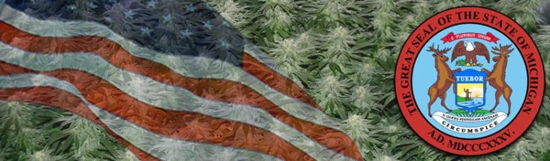 Buy Marijuana Seeds In Michigan