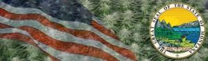 Buy Marijuana Seeds In Montana