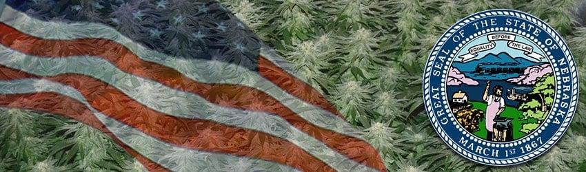 Buy Marijuana Seeds In Nebraska