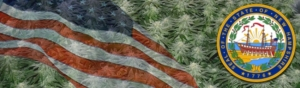 Buy Marijuana Seeds In New Hampshire
