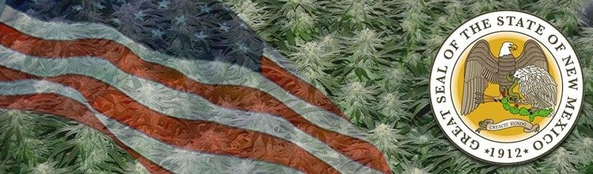 Buy Marijuana Seeds In New Mexico