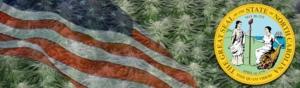 Buy Marijuana Seeds In North Carolina