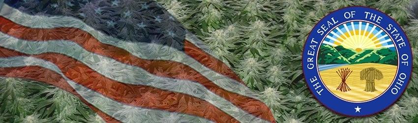 Buy Marijuana Seeds In Ohio