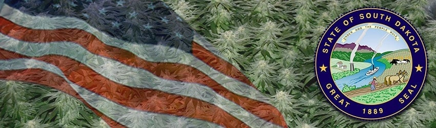 Buy Marijuana Seeds In South Dakota