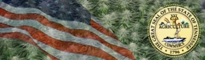 Buy Marijuana Seeds In Tennessee