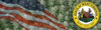 Buy Marijuana Seeds In West Virginia
