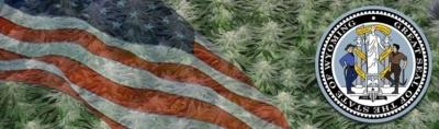 Buy Marijuana Seeds In Wyoming