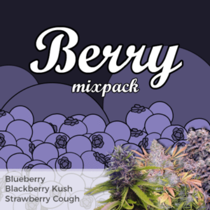 Berry Mix Pack Marijuana Seeds