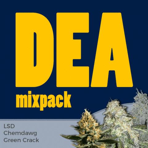 DEA Mix Pack Marijuana Seeds