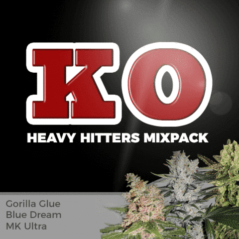 Heavy Hitters Mix Pack