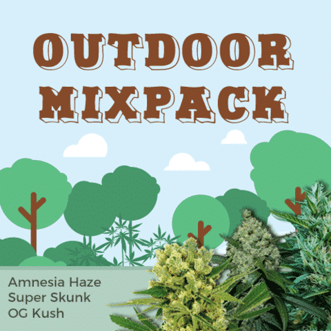 Outdoor Mix Pack Seeds