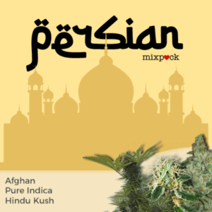 Persian Mix Pack Marijuana Seeds