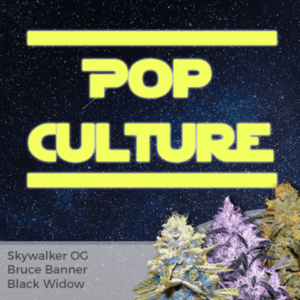 Pop Culture Mix Pack Marijuana Seeds