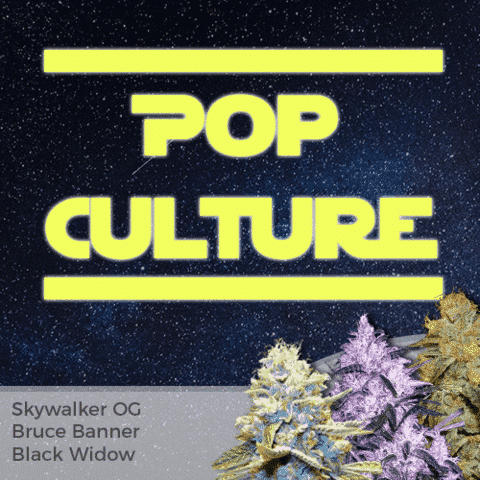 Pop Culture Mix Pack