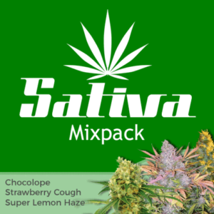 Sativa Mix Pack Marijuana Seeds