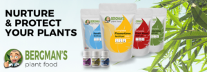 Buy Bergmans Plant Food