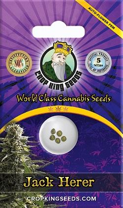 Jack Herer Auto Feminized Seeds