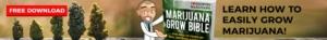 Free Grow Bible Download