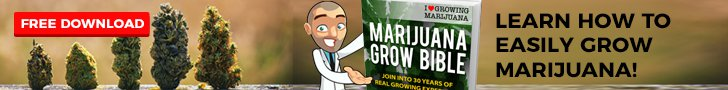 Free Grow Bible Download