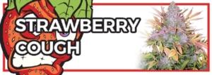 Strawberry Cough Marijuana Seeds