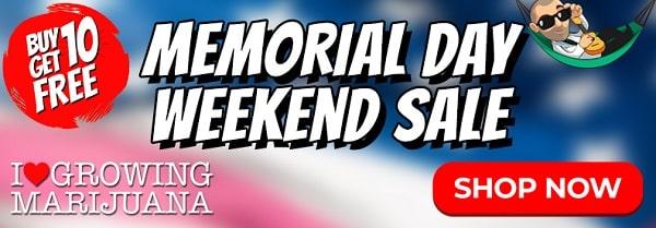 Memorial Day Sale On Selected Marijuana Seeds
