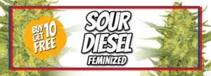 Sour Diesel Seeds Memorial Day Sale