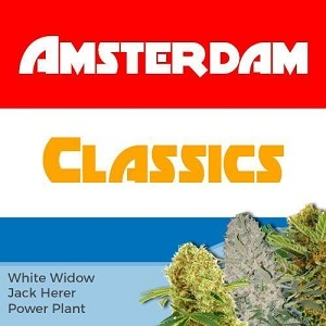 Amsterdam Classic Marijuana Seeds Mix Pack