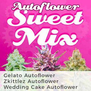 Autoflower Sweet Mix
