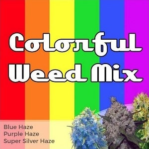 Colorful Weed Seeds Mix