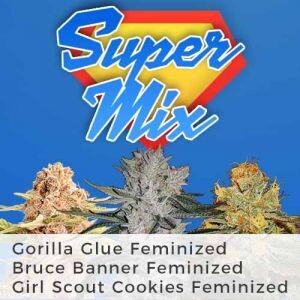 Feminized Super Seeds Mix