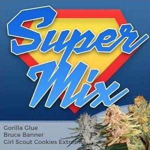 Super Feminized Mix Pack