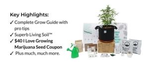 Best Pot For Pot Grow System