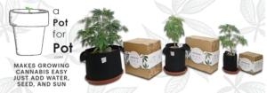Pot For Pot Growing Kit