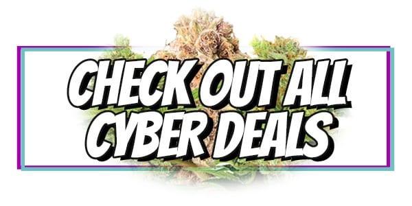 Cyber Week Marijuana Seeds Sale