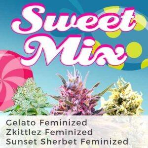 Sweet Seeds Feminized Mix