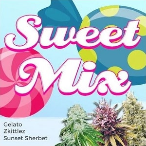 Sweet Seeds Feminized Mix