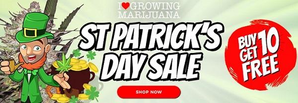 St Patricks Day Marijuana Seeds Offer