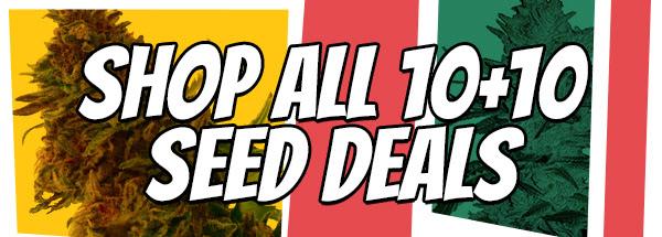 420 Sale Buy 10 Get 10 Free Feminized Autoflowering Seeds