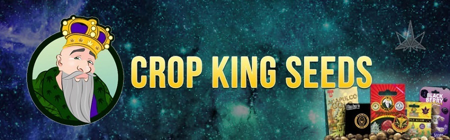 Crop King Cannabis Seeds For Sale Online