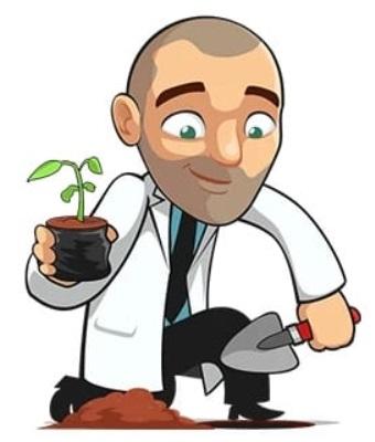 Grow Marijuana Easy