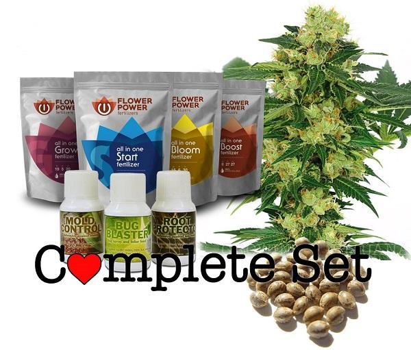 Cannabis Grow Sets - Autoflowering